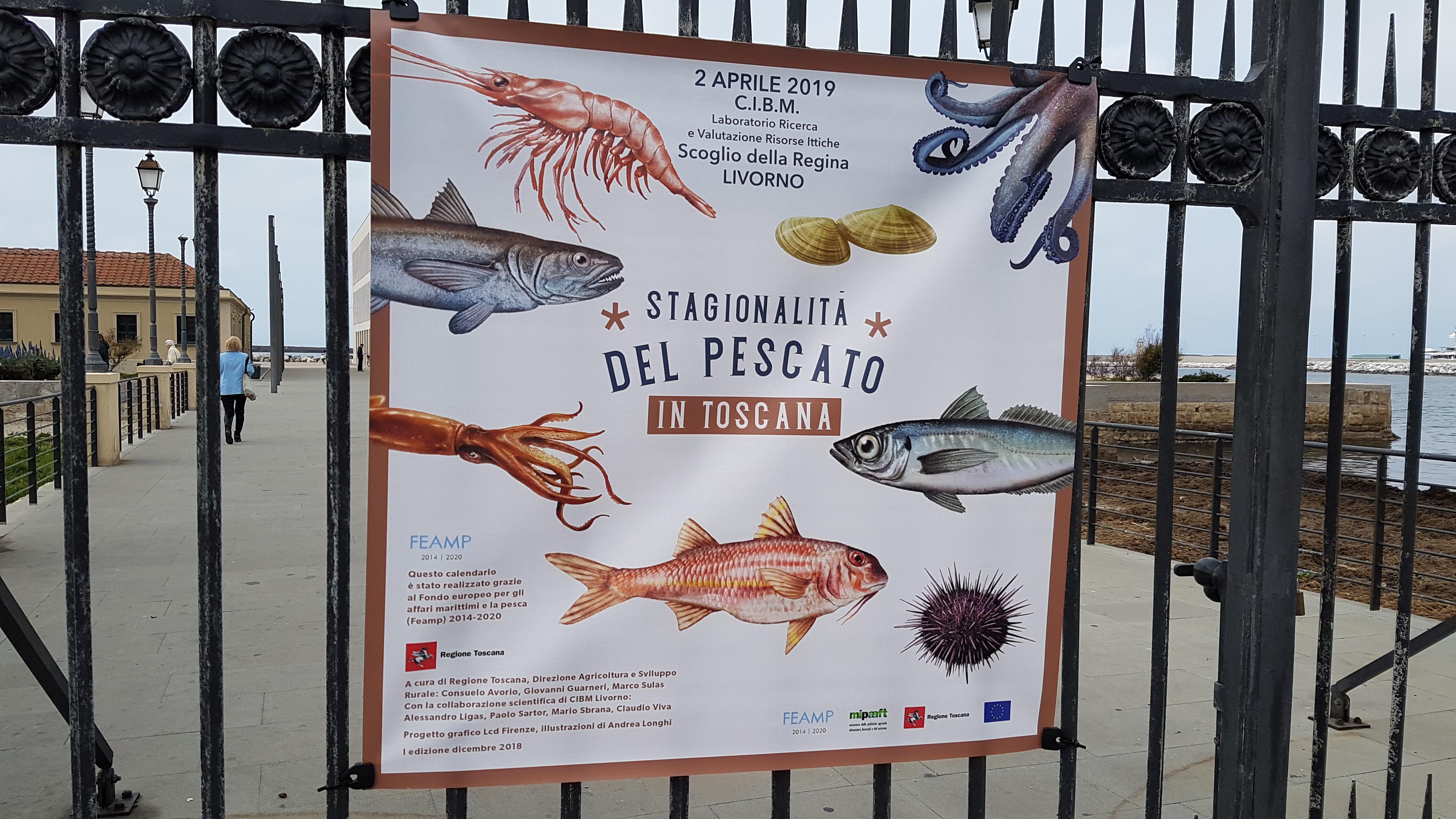 Calendario Pesca 2020.Presentato Il Calendario Del Pescato Un Aiuto A Mangiare